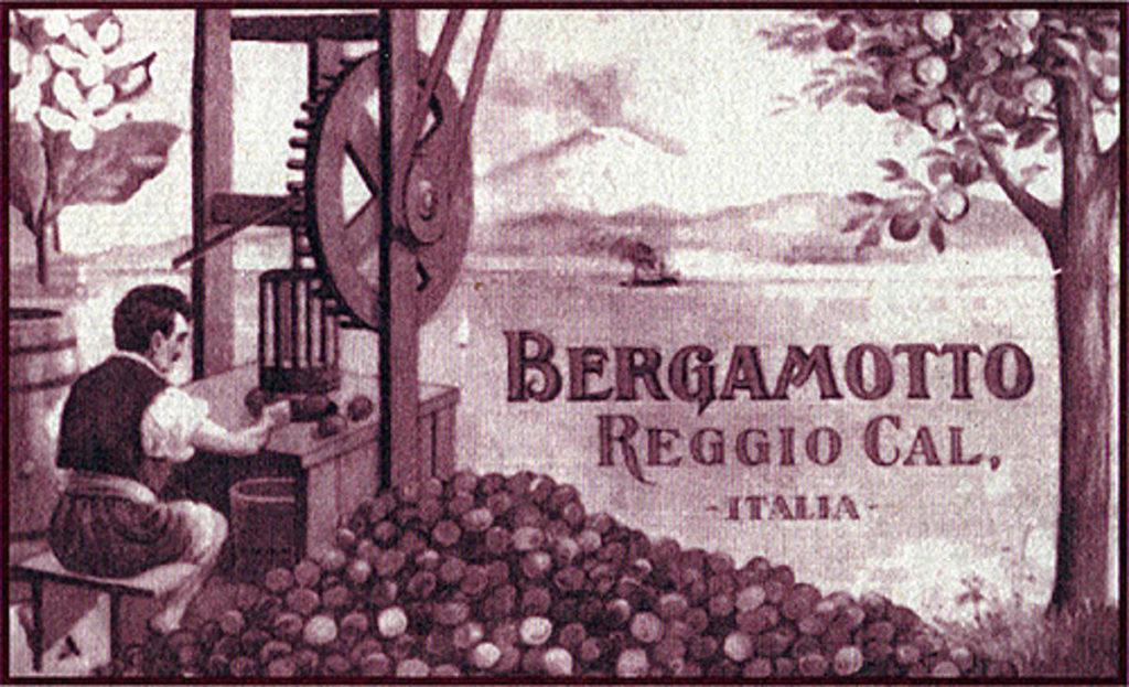 Museo del Bergamotto a Reggio Calabria storia e perchè visitarlo