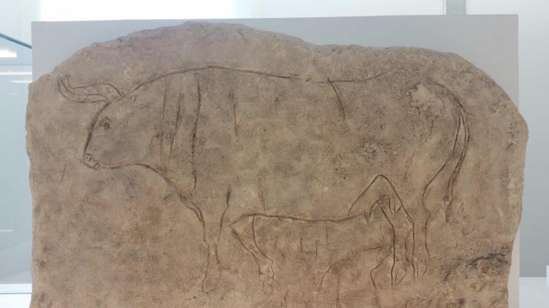 Il Museo Nazionale della Magna Grecia a Reggio Calabria, graffiti rupestri della grotta del Romito , boi primigenius