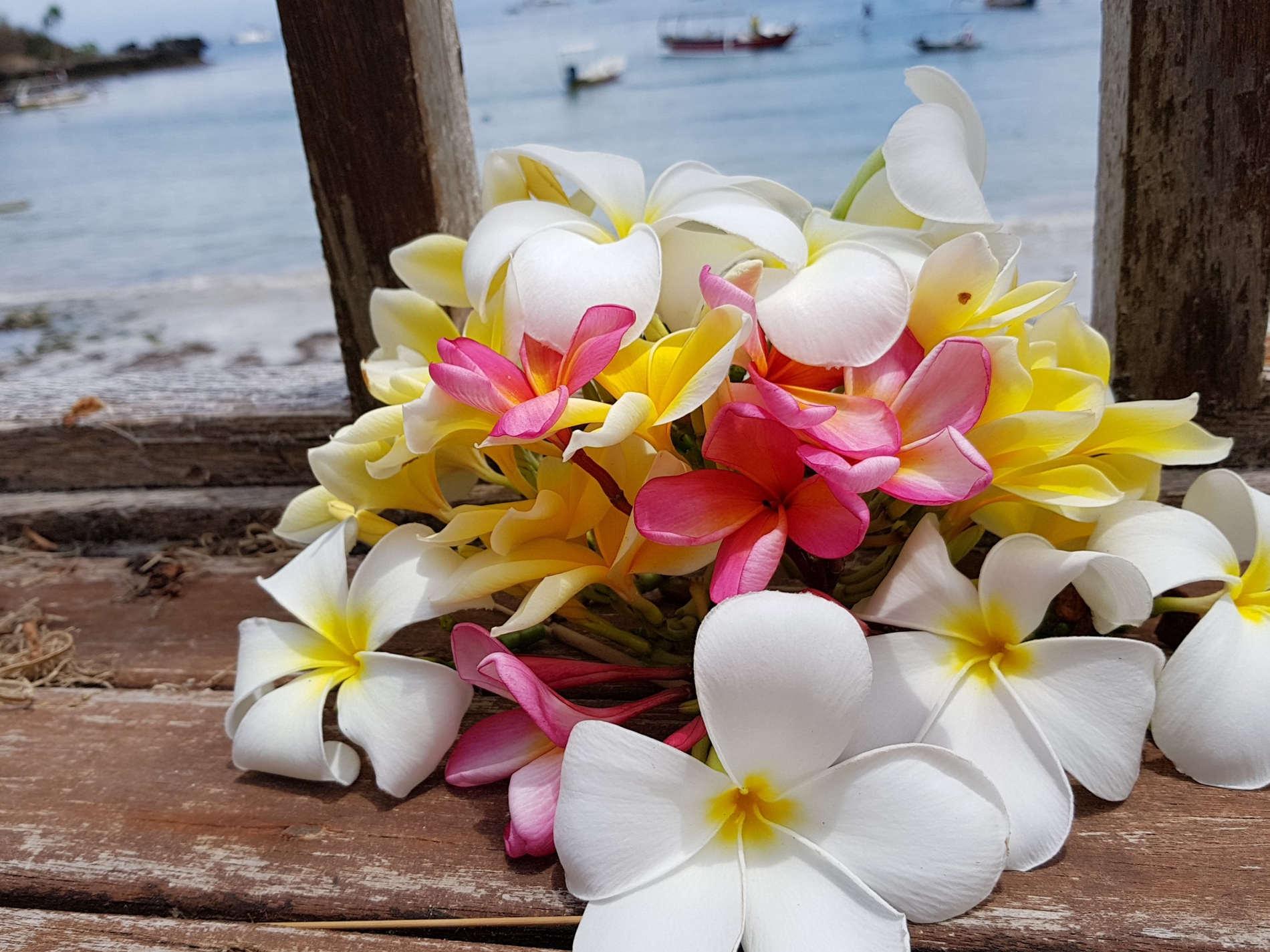 Dove dormire a Bali: colori dei frangipani e del mare al Bay Shore Huts