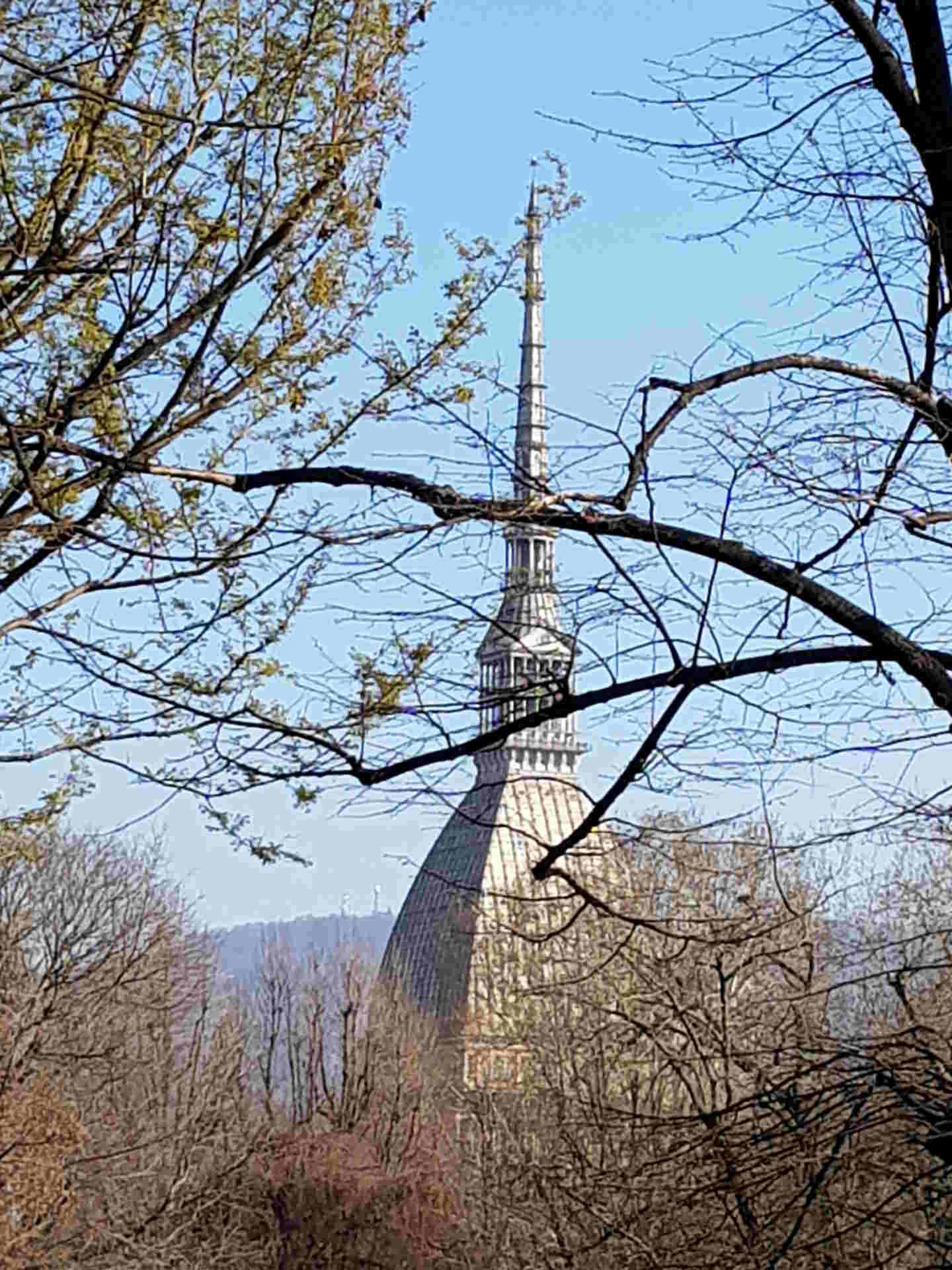 Il simbolo di Torino: la Mole Antonelliana vista dai Giardini del Palazzo Reale.Il simbolo di Torino: la Mole Antonelliana vista dai Giardini del Palazzo Reale. cosa vedere a Torino