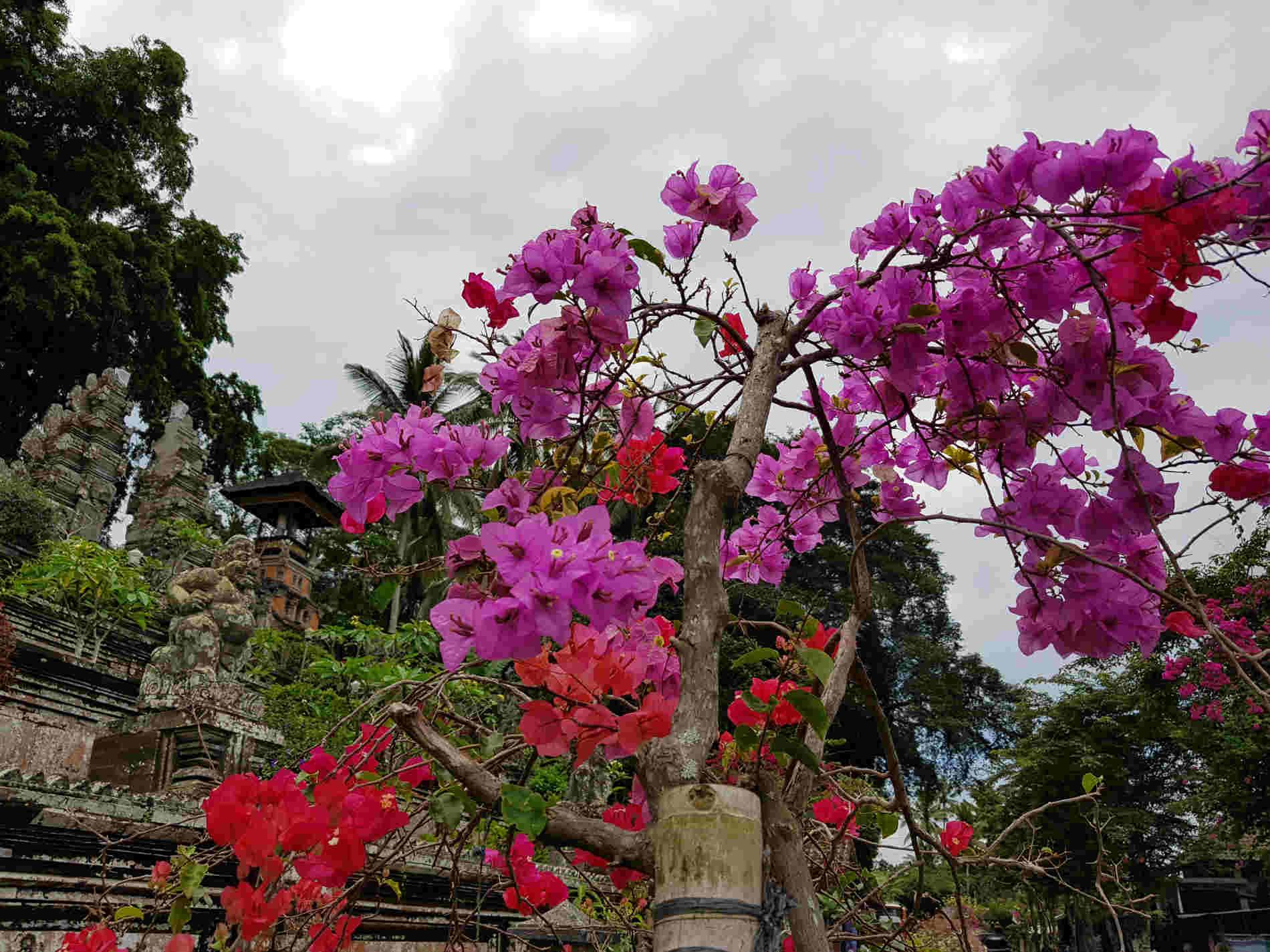 Bali - Pura Lempuyang: I mille colori dell'Isola degli Dei