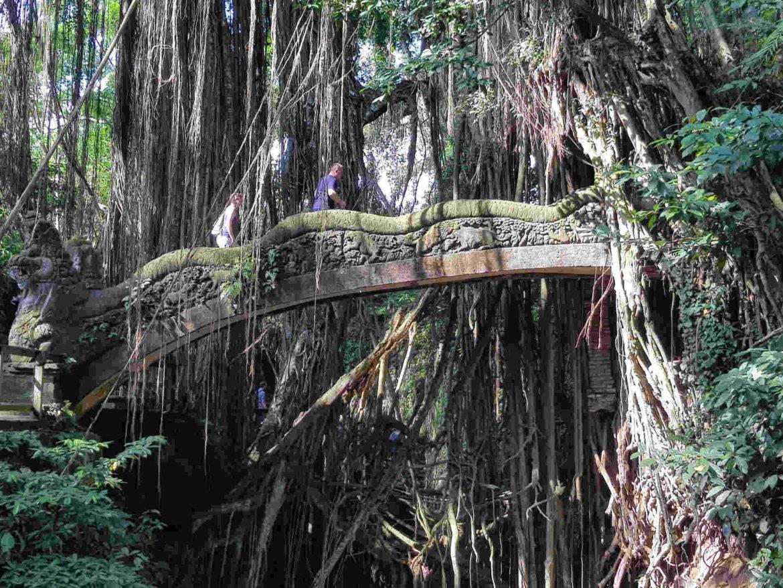Un Itinerario a Bali per riscoprire il cuore dell' Isola degli Dei!