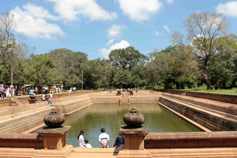 Viaggio in Sri Lanka bacini idrici
