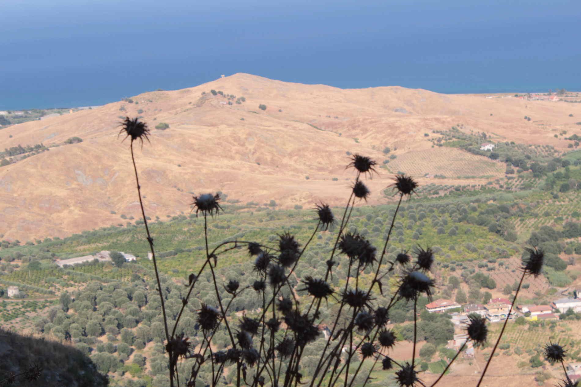 Una affascinante panoramica da Brancaleone Vetus