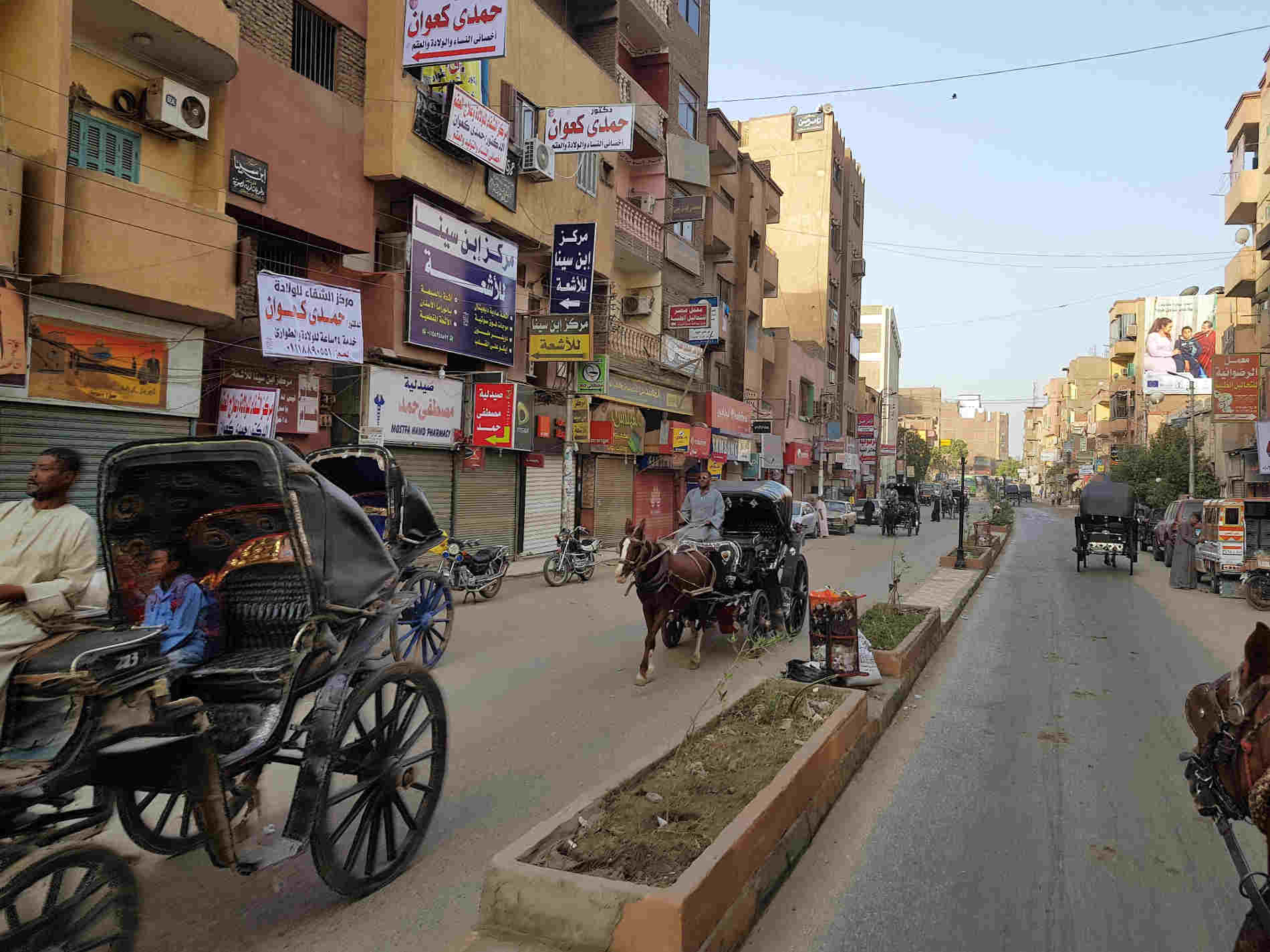 crociera sul fiumo Nilo carrozzelle per Edfu