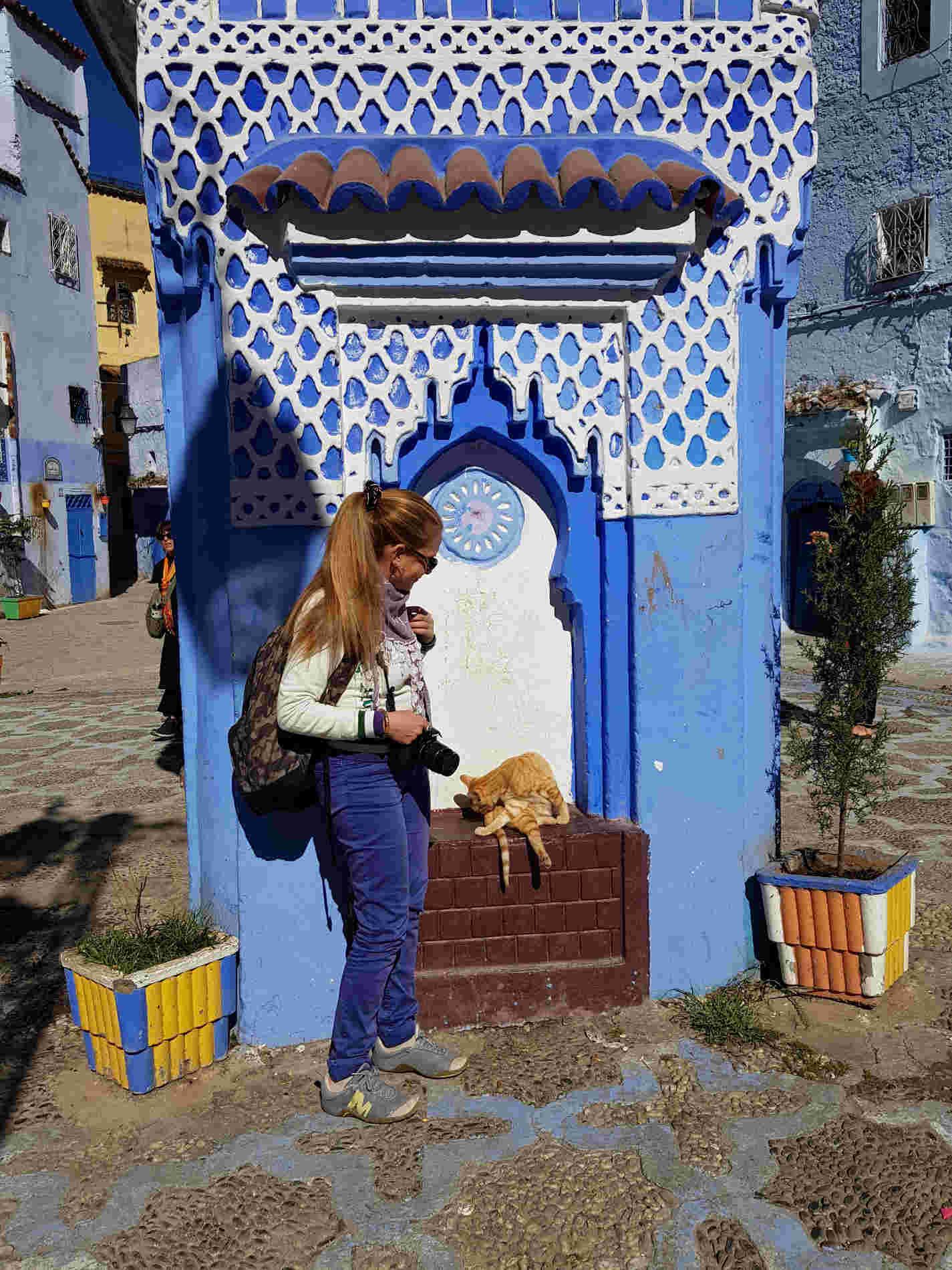 Chefchaouen cosa vedere - Piazza Haouta gatti