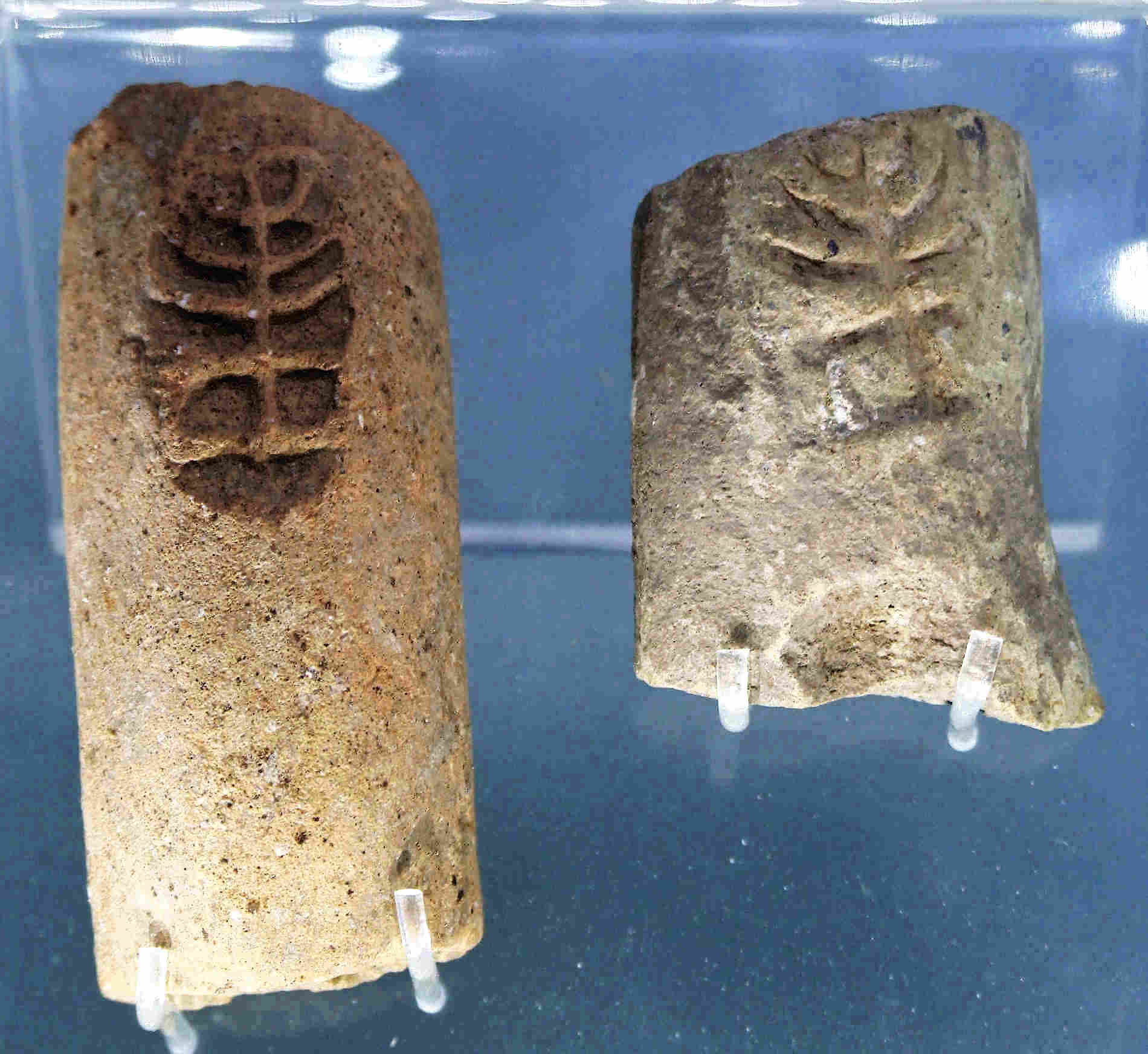 Anfore con la Menorah il candelabro a sette bracci parco Archeoderi Bova marina