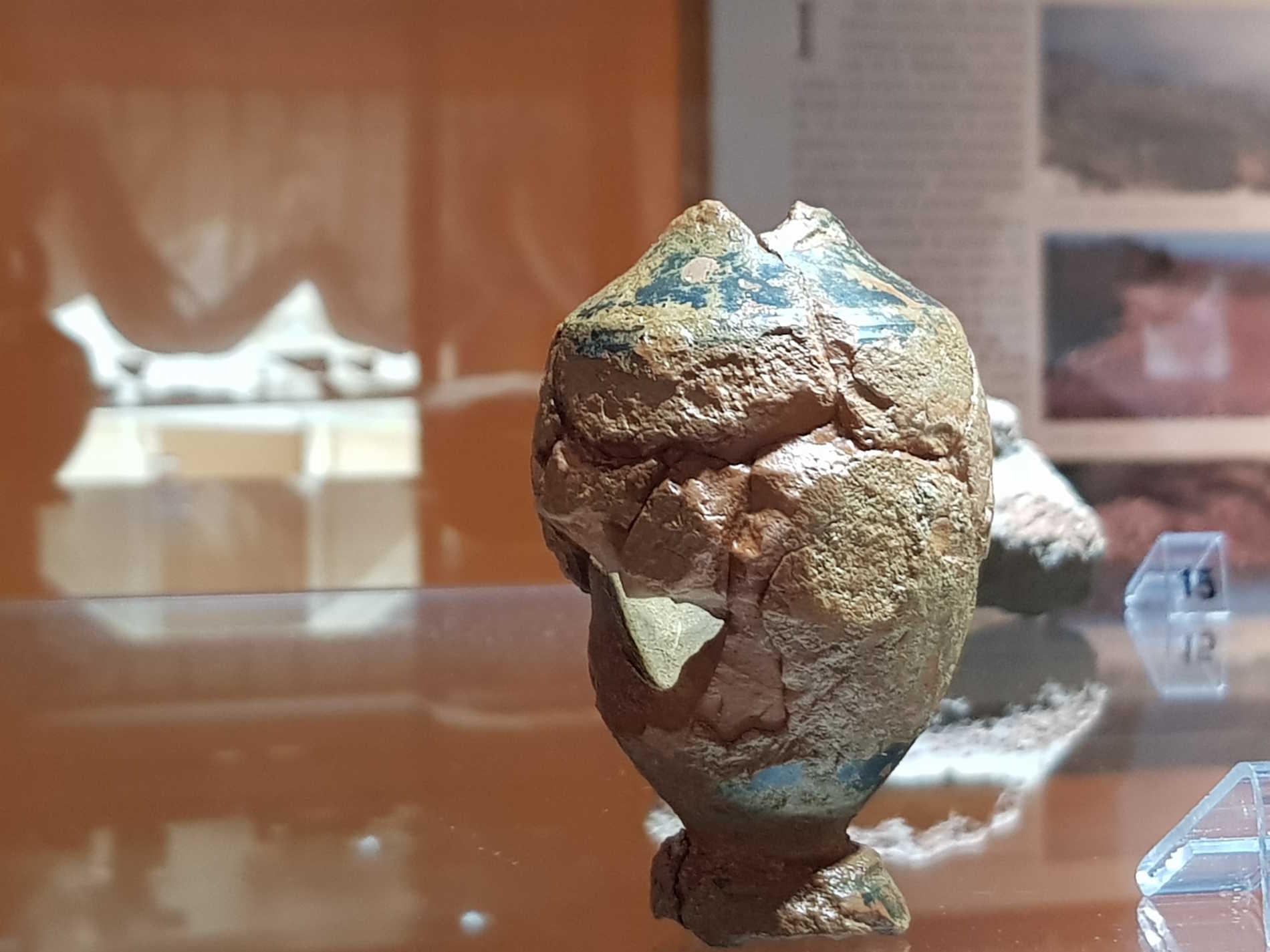 Cetraro museo dei Brettii e del Mare Reperti rinvenuti nella necropoli di Treselle
