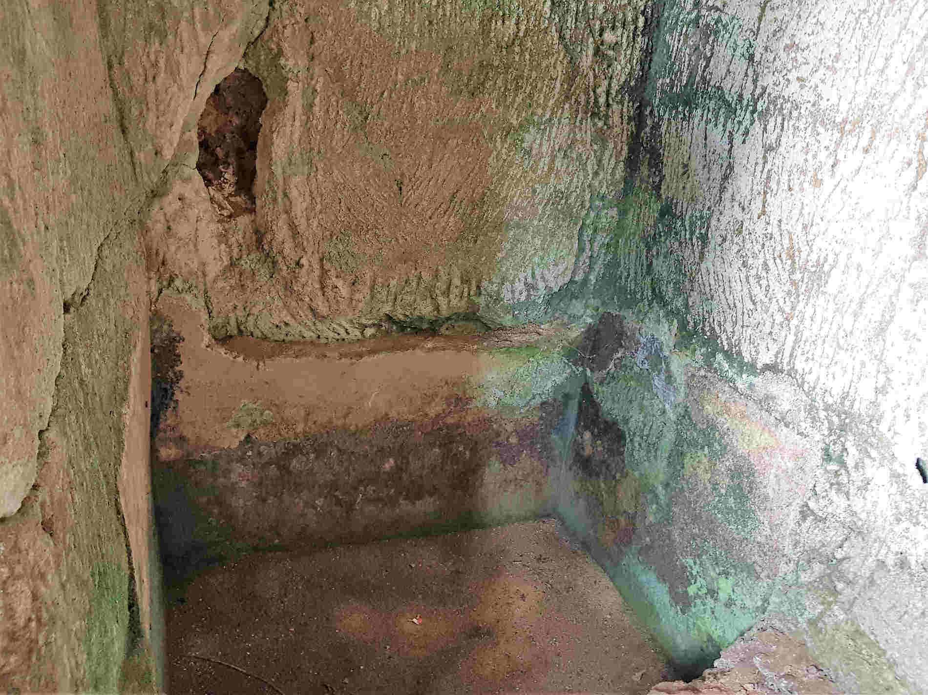 Un Palmento nel sito rupestre di Zungri
