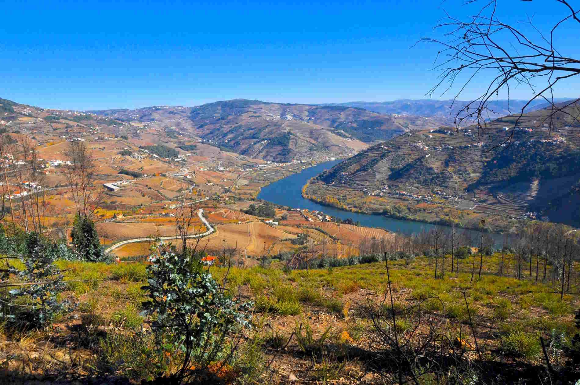 vale-douro-Portogallo-4-Chiacchiere-con-la-blogger-Intervista-con-Liliana-Navarra
