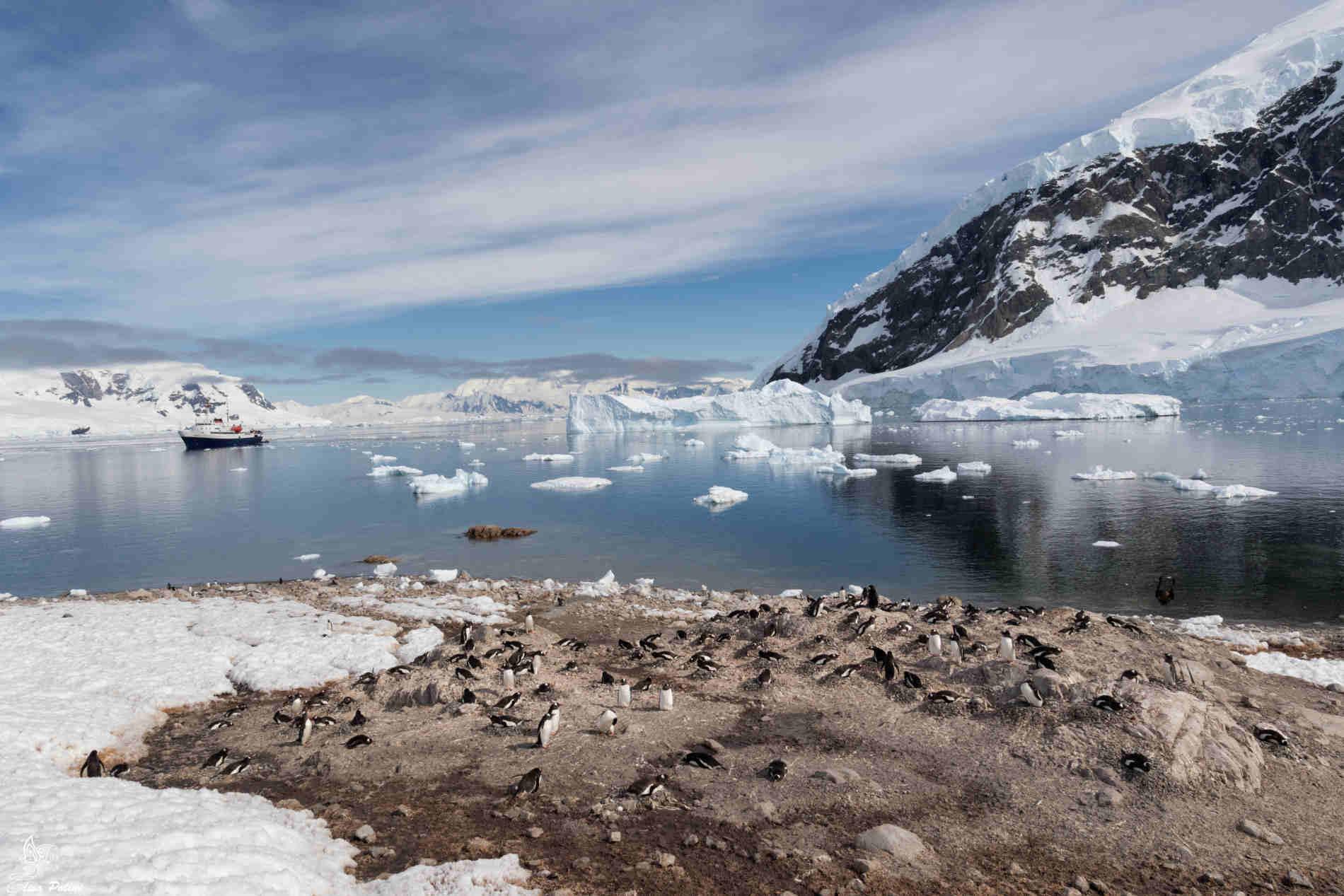 Antartide nei racconti della Travel Blogger Elisa Polini