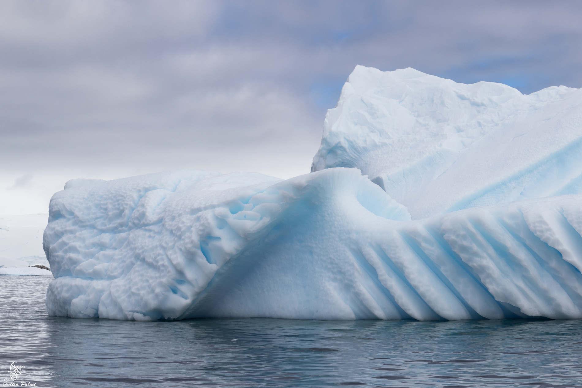 Iceberg contenenti polari -Intervista con Elisa Polini su spunti di Viaggio