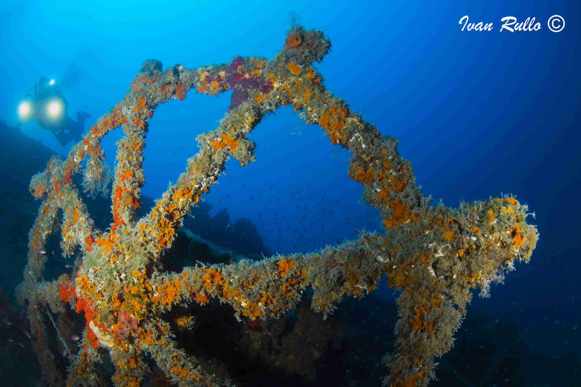 Relitto del Pasubio Immersioni imperdibili in Calabria