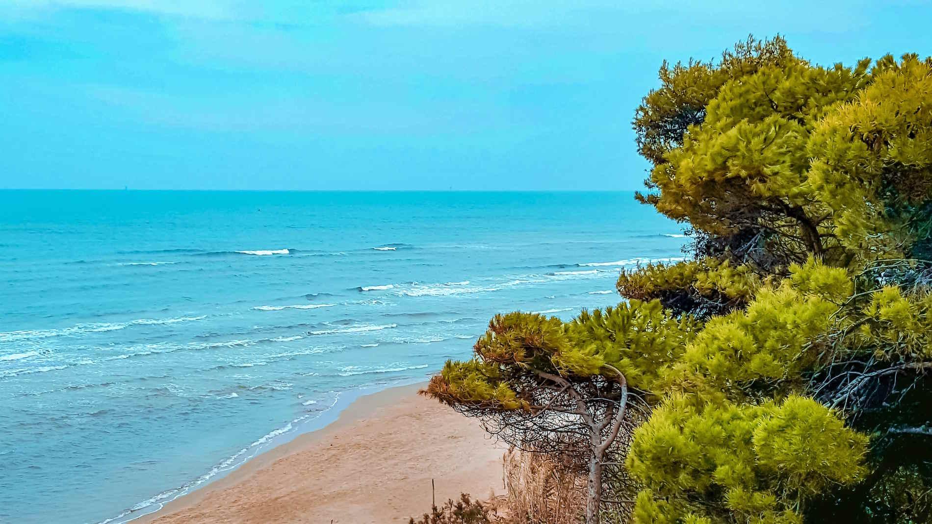 Spiaggia e pineta di Torre di Cerrano Abruzzo, Italia