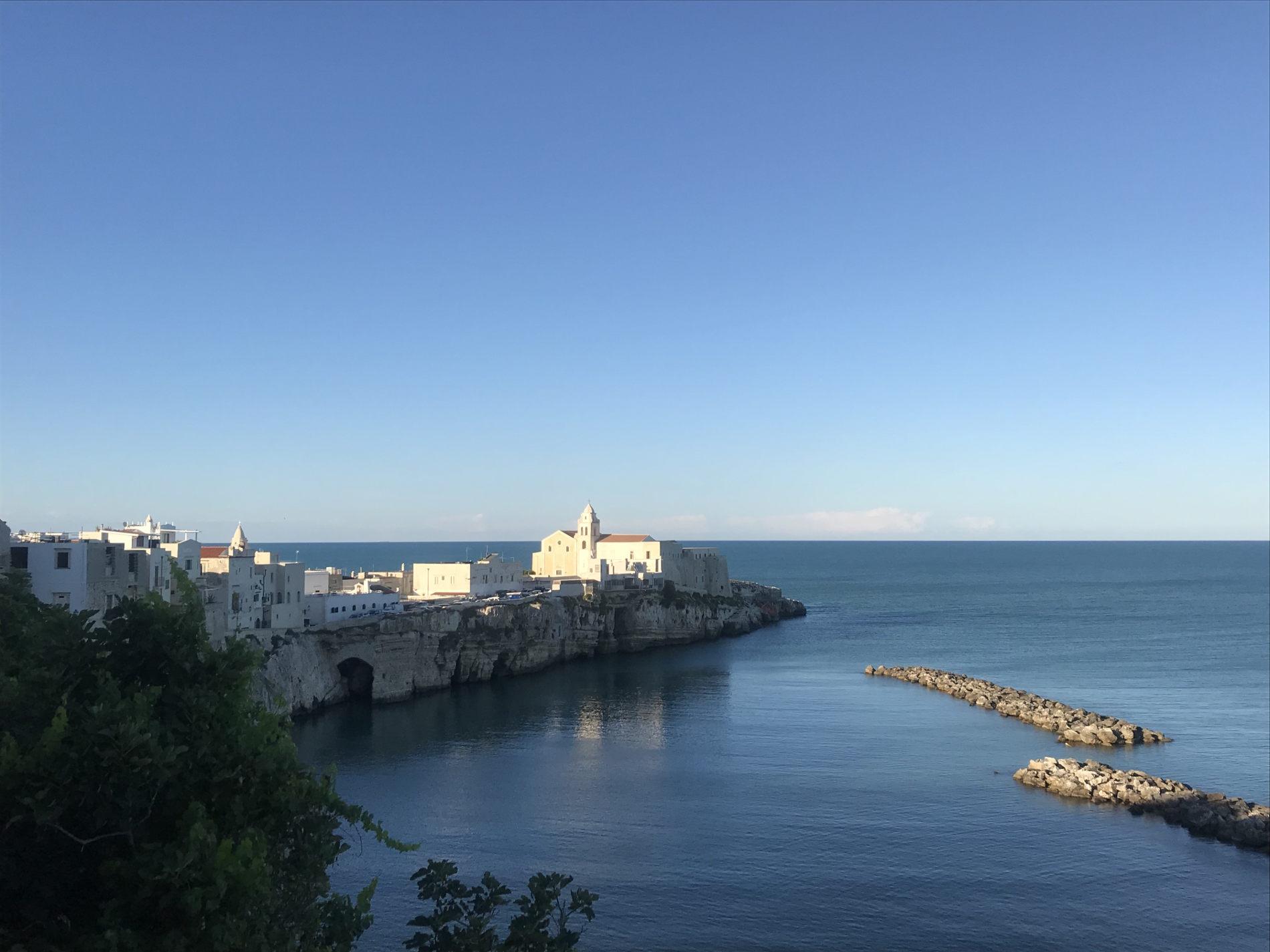 Panorama su Vieste la perla del Gargano puglia italia