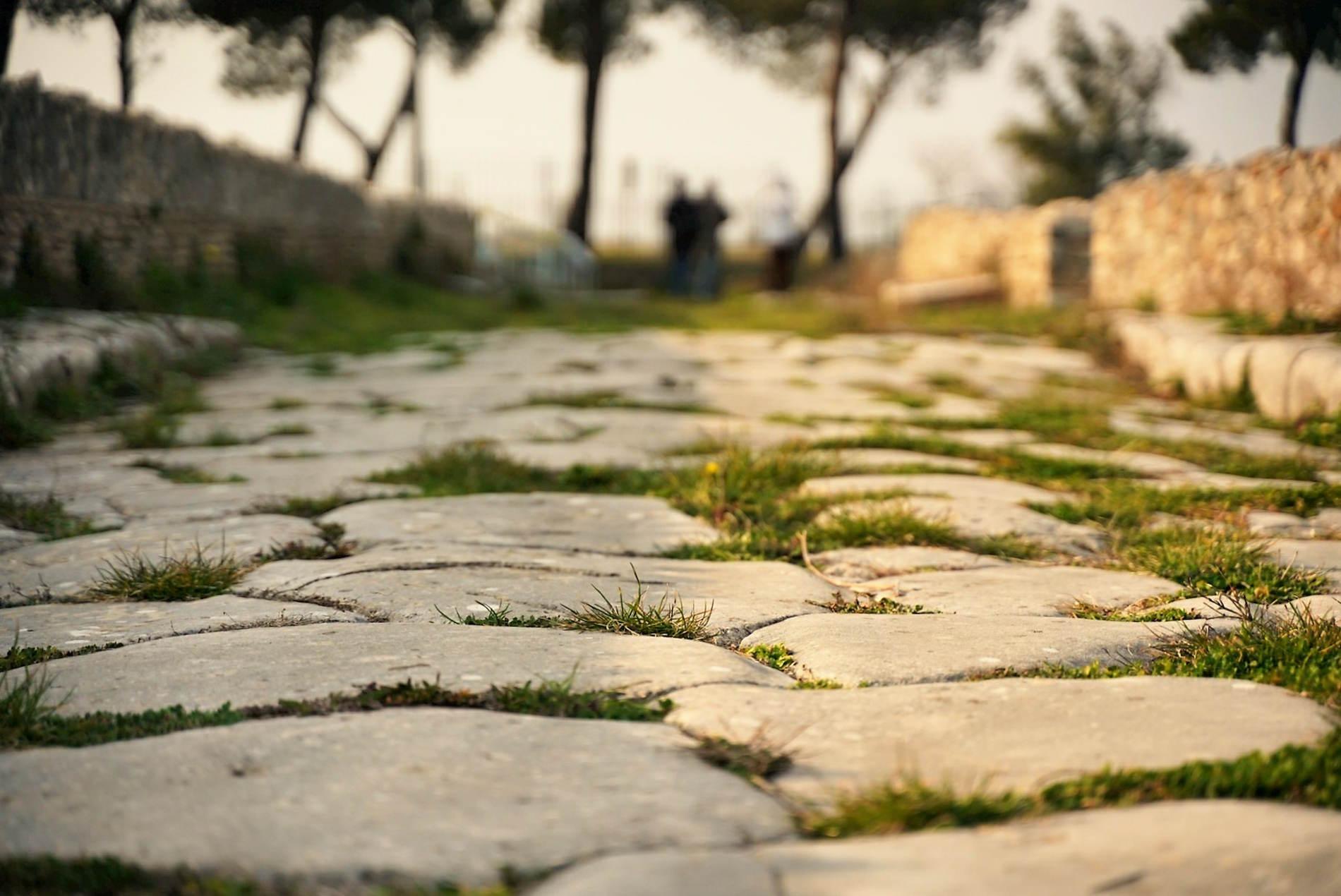 Cosa vedere in Basilicata - Strada romana nella Zona Archeologica di Venosa