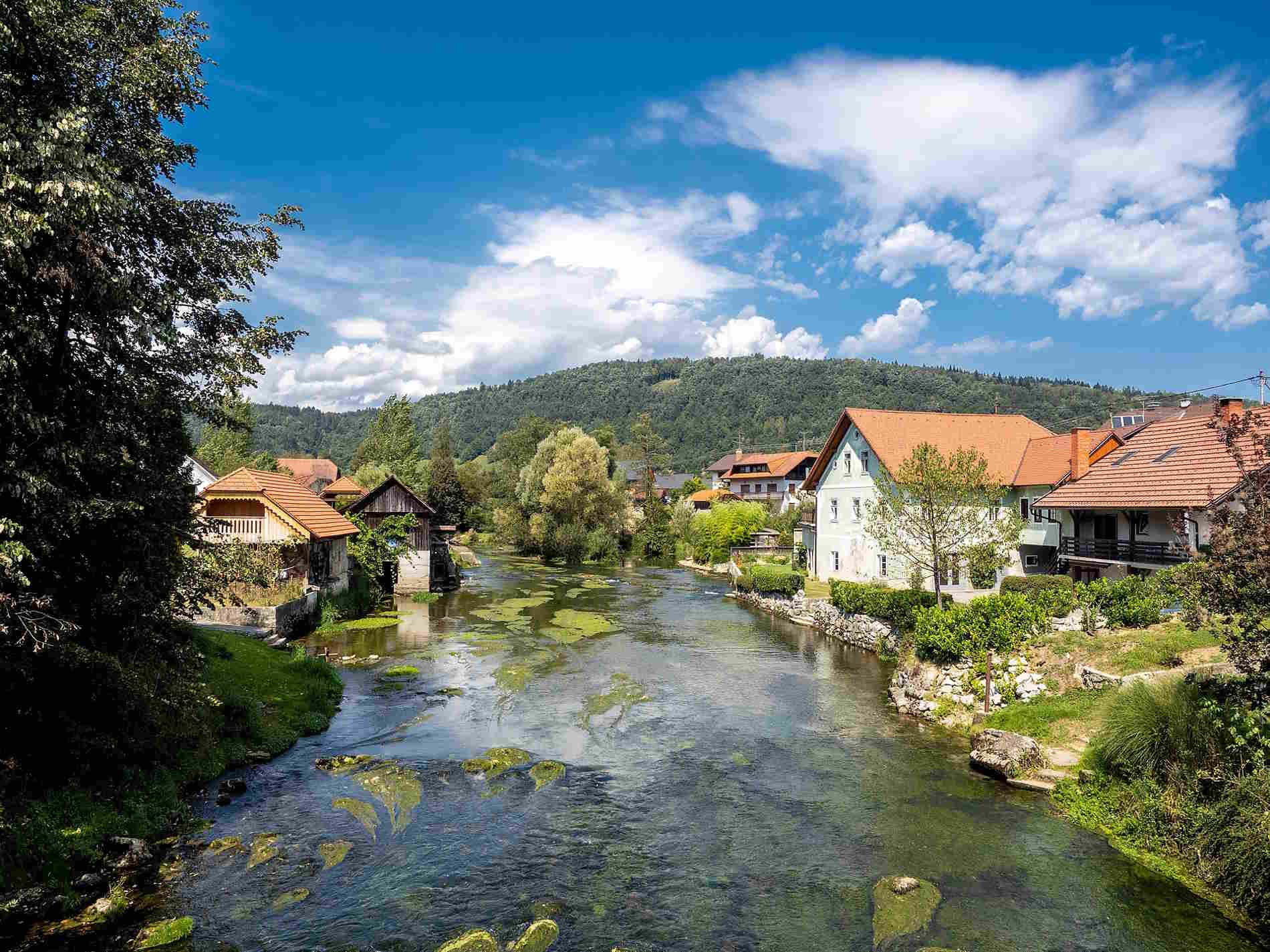Scorci nella zona di Dolenjska in Slovenia