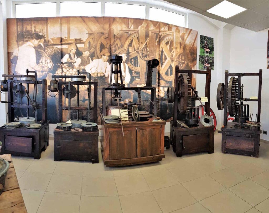 La storia del Bergamotto al Museo del Bergamotto a Reggio Calabria